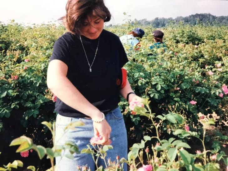 Jodi Wilson picks roses