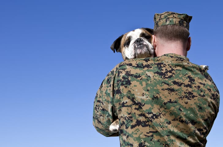 military man hugging a dog