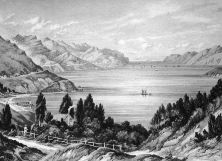 An 1877 lithograph by W.D. Bletchley of Lyttelton Harbour, an inlet in Banks Peninsula on the coast of Canterbury, New Zealand.