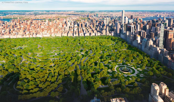A rendering of a potential Central Park design from above