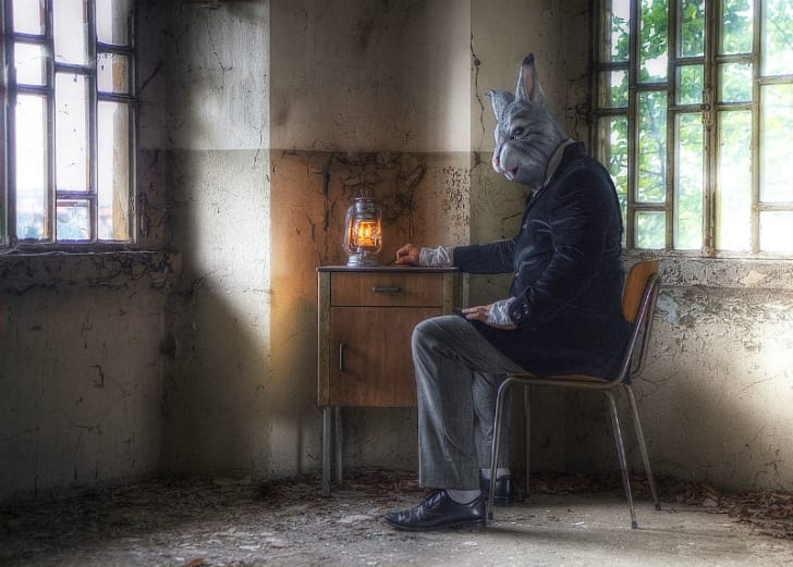 A man in a bunny mask sits at a table