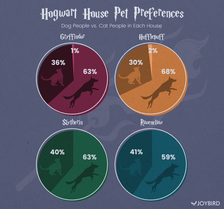 Infographic of Harry Potter fans' cat vs dog preferences by house