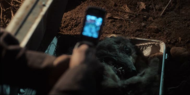 A dead dog appears in a screen capture from 'Castle Rock'