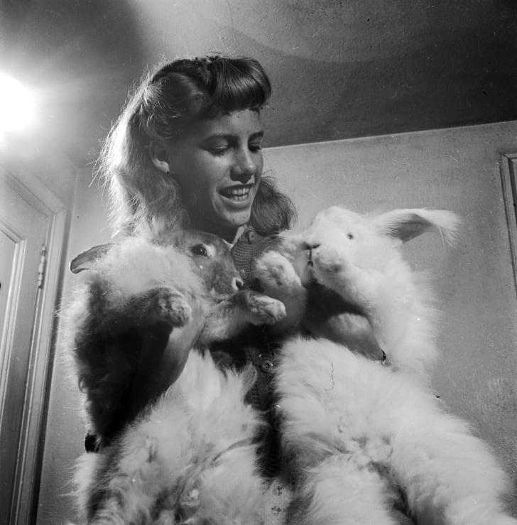 A woman shows off her two pet angora rabbits, circa 1955.