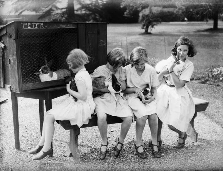 Schoolgirls care for pet rabbits, 1932.