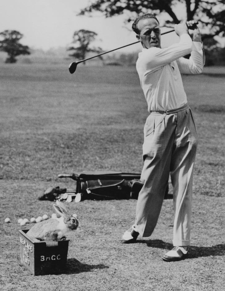 A golfer makes a practice drive while his pet rabbit minds the balls; 1938.