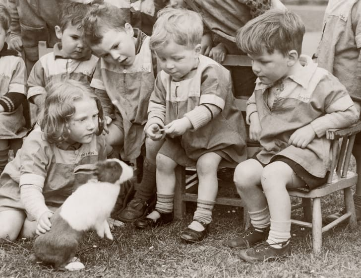 Nursery school children playing with their pet rabbit Bubbles; 1939.