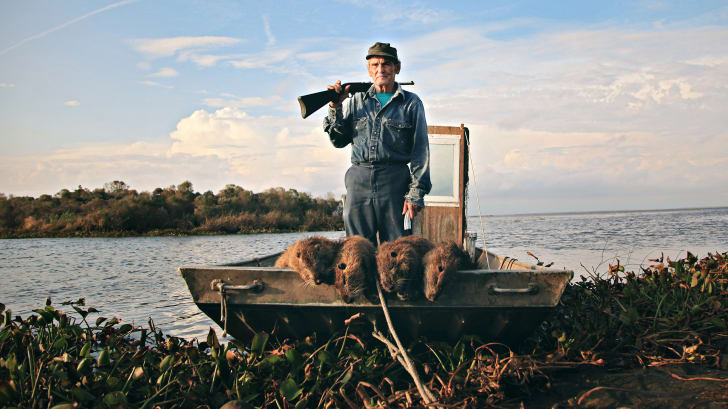 A man with a gun over his shoulder standing in a boat filled with nutria carcases