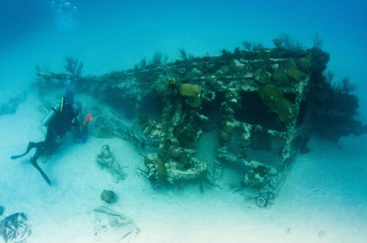 Wreck of the Mary Celestia