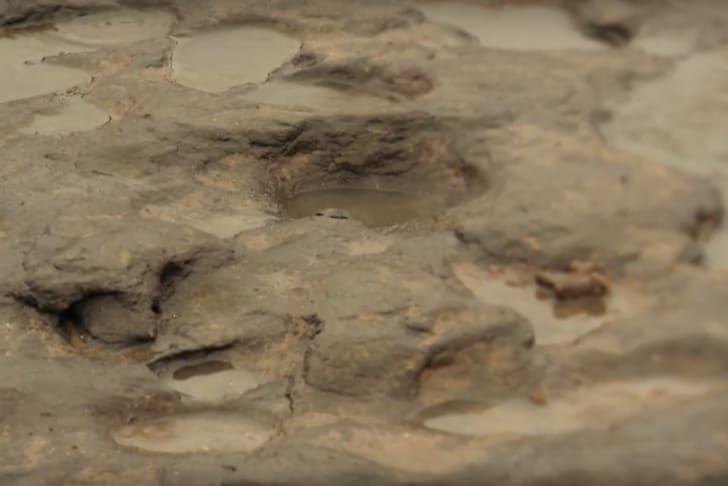 Oldest human footprints, found in Africa