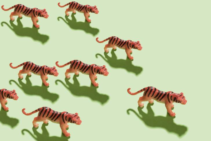 tiger figurines on green ground