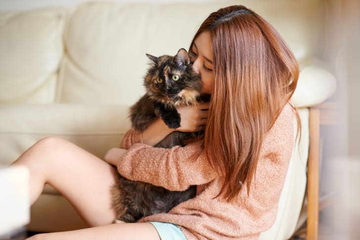 A woman kissing a fluffy calico cat that is looking off to the side.