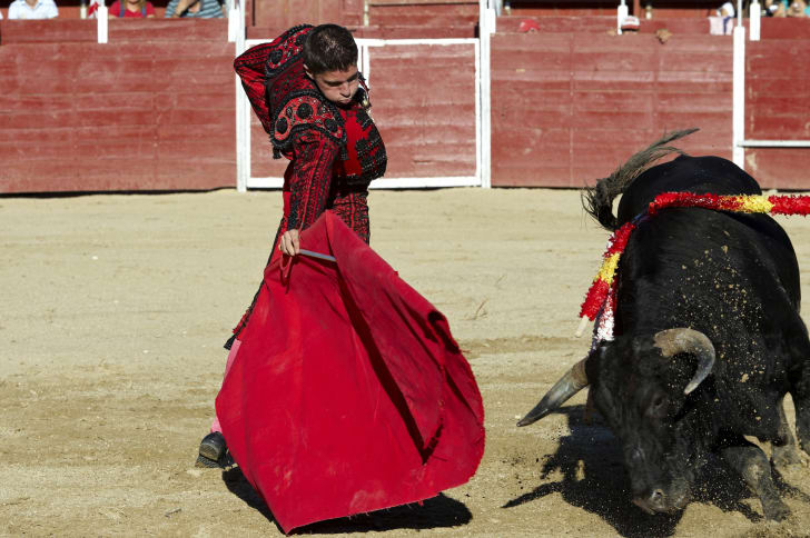 A matador in the arena with a bull.