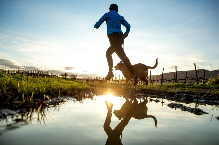 Person running in field with a dog.