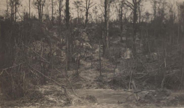 Belleau Wood, 1918