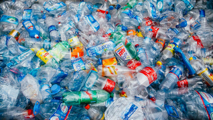 A collection of discarded plastic bottles