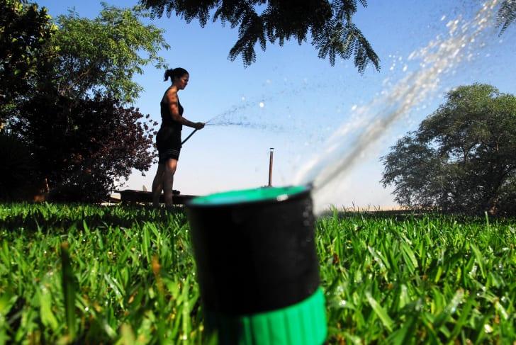 Sprinkler system spraying water.