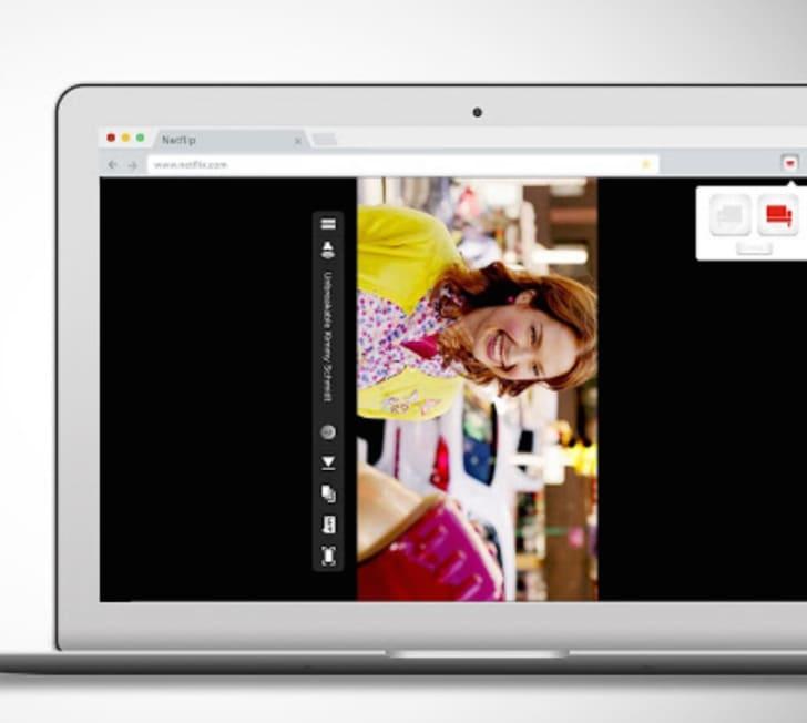 A screen shot of Netflip