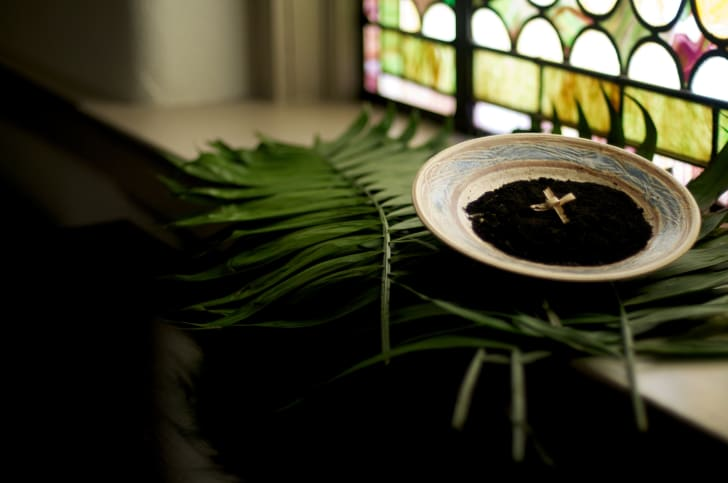 A palm cross in a dish of ashes on top of a green palm leaf.