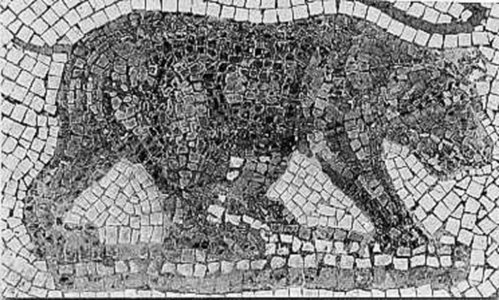 A Roman mosaic of the extinct Atlas bear.