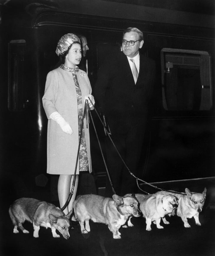Queen Elizabeth II arrives at King's Cross railway station in London 15 October 1969 with her four dogs