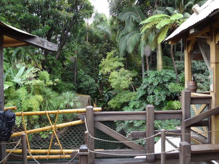 Jungle Cruise at Disneyland in Anaheim, California