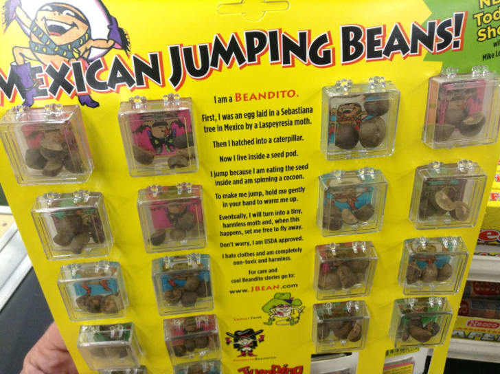 A Mexican jumping bean store display