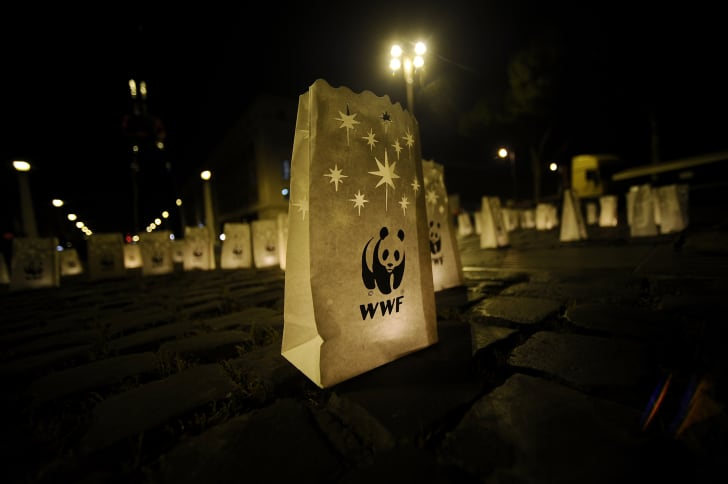 paper lantern with WWF logo