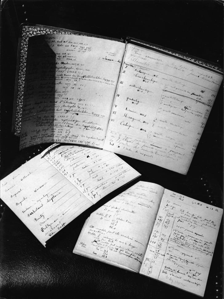 Marie Curie's journals