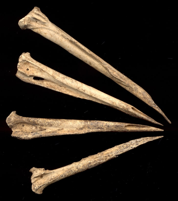 3600 year old tattoo needles