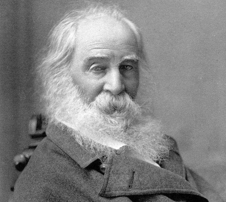 A photograph of Walt Whitman