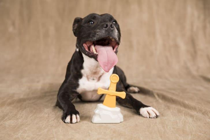 ExcaliGRRR Sword dog toy