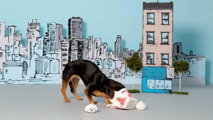 Dog with plush dumpling toys