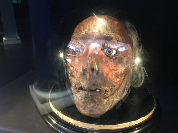 The preserved real head of Jeremy Bentham