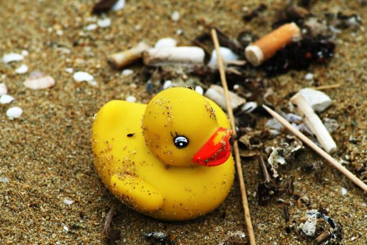 A rubber ducky on the beach