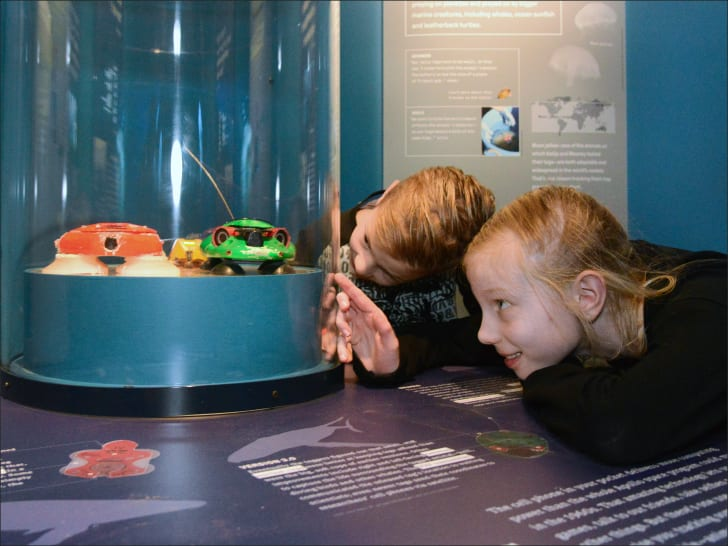 Kids looking at museum exhibit.
