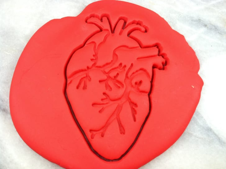 Anatomical Heart Cookie Cutter Detailed
