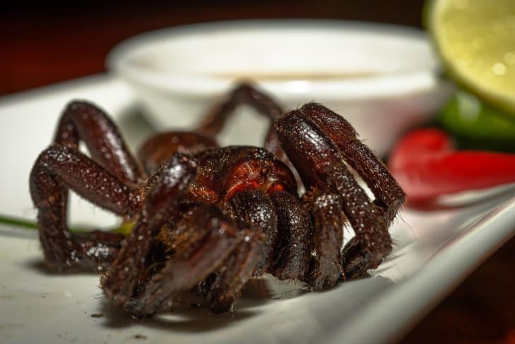 Fried tarantula on a plate