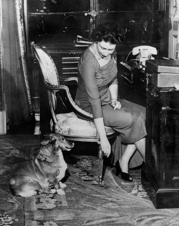 Queen Elizabeth with her dog Susan, circa 1959.