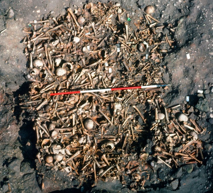 mass grave of viking army at repton