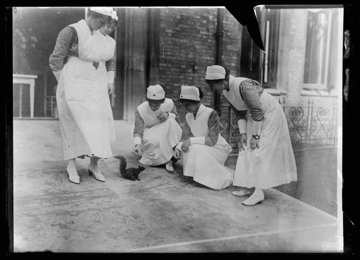 A historical photo of nurses leaning down to feed a black squirrel