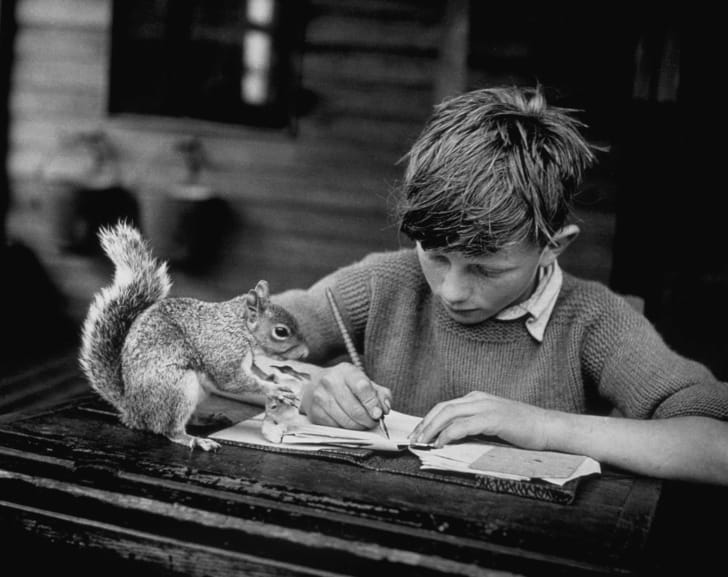 A boy doing homework with a squirrel on the table.