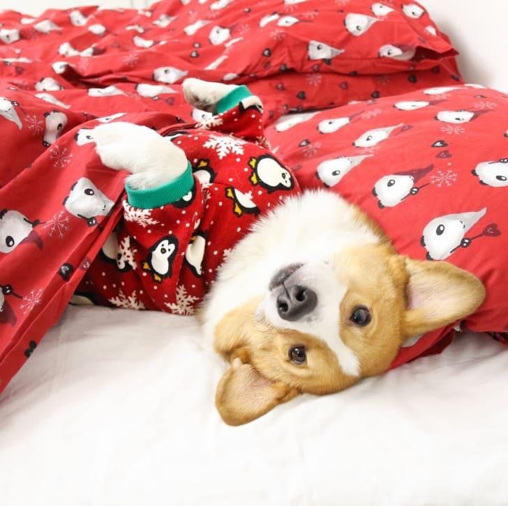 Fitwarm Cute Penguin Xmas Dog Pajamas