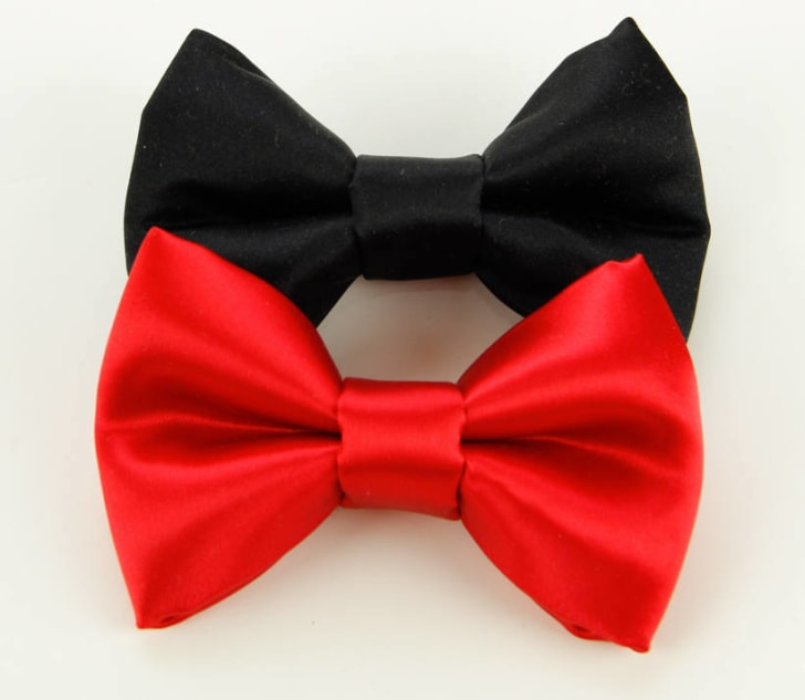 Satin Bow Tie for Dog