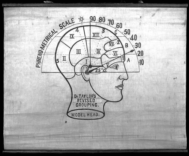 A phrenological model