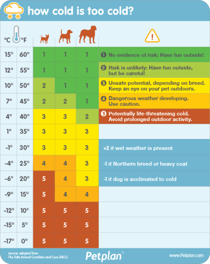 Infographic of the Tufts Animal Condition and Care (TACC) system, created by  Dr. Kim Smyth, a staff veterinarian with pet insurance company Petplan,