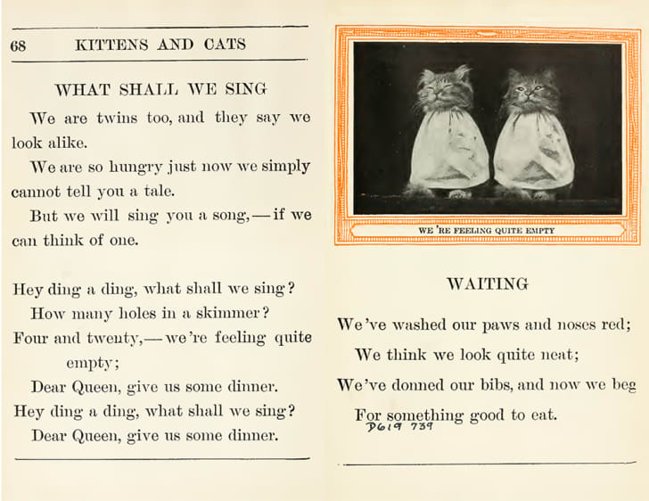 A spread from 'Kittens and Cats' features a photo of two cats captioned 'We're feeling quite empty.'