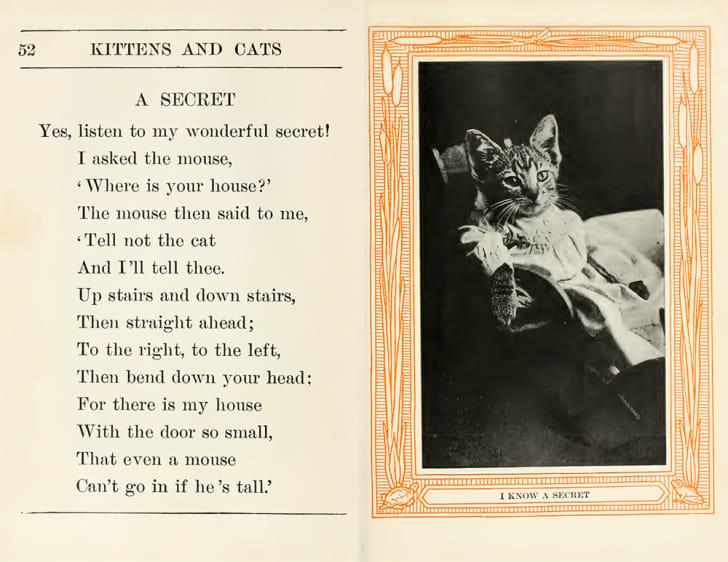 The caption under a vintage photo of a cat says 'I have a secret.'
