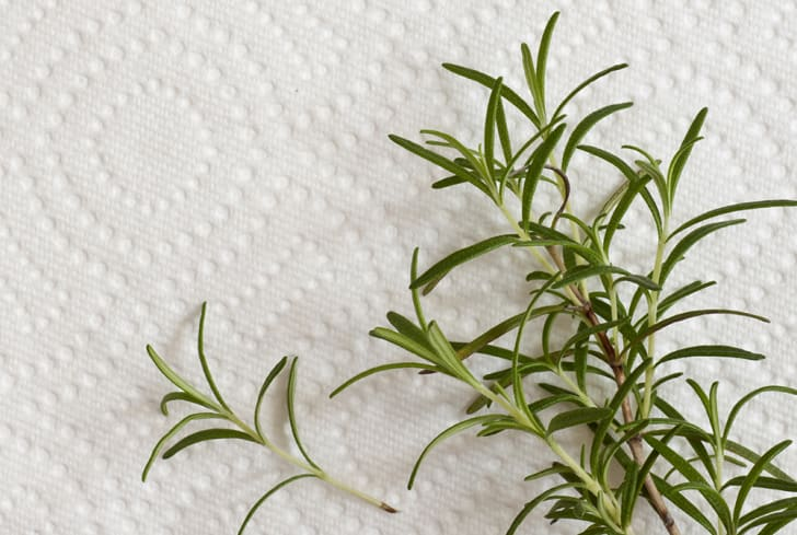 Rosemary on a paper towel