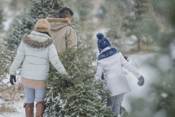 Customers bringing home a Christmas tree